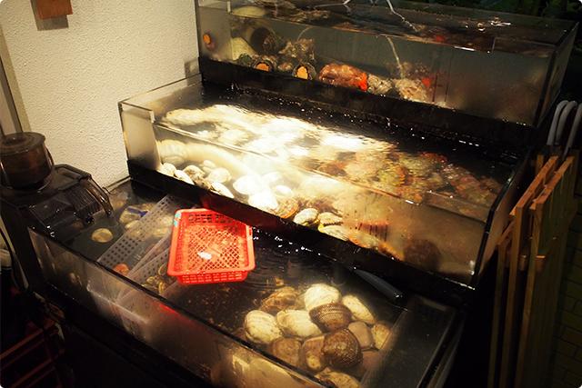 色とりどり、種類も豊富な貝がお出迎え!